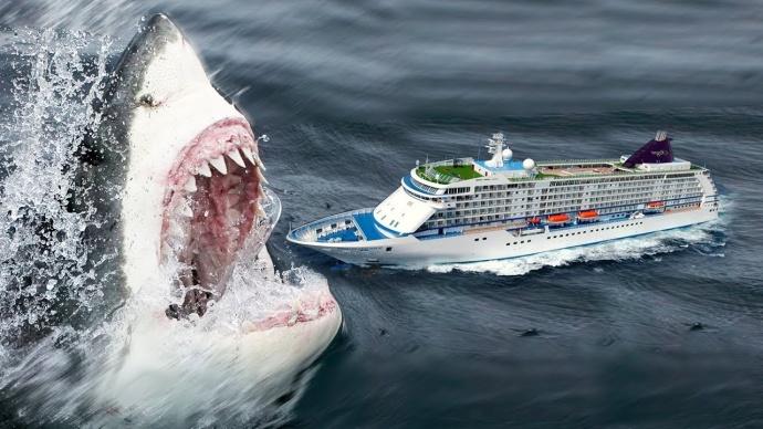 Мегалодон: самая большая акула в мире — как они вымерли? | new-science.ru