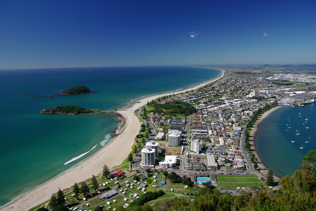Лото новой зеландии - lotto new zealand