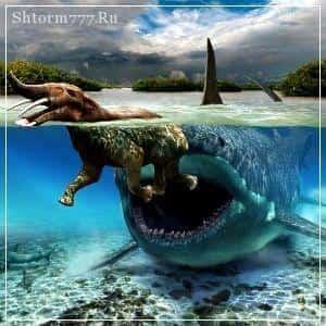 Мегалодон: размеры акулы, описание, что ел, вымирание